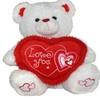 Valentines Day Gift Speaks I Love You & Turns Red SoftPlush Teddy Bear