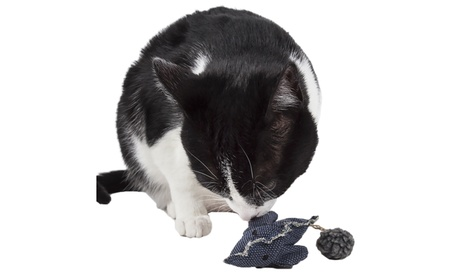 Pet Life Pompom Kitty Mouse Plush Catnip Cat Toy 3dc8aa74-6950-4a49-8b3f-a965ef6a5247