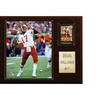 "NFL 12""x15"" Doug Williams Washington Redskins Player Plaque"