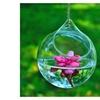2pcs Creative Round or Spherical Transparent Hanging Glass Vase