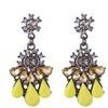 Crystal Drop dangle Resin Charm women's Earring