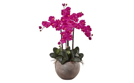 Nearly Natural Phalaenopsis Orchid Arrangement with Sand Colored Bowl 21850f78-ae04-4fbf-b3a3-2e8fab71ce2a