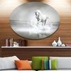 White Horse Running in Water' Ultra Glossy Animal Oversized Metal Circle