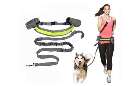 Dog-Collar Pet accessories Puppy Dog Harness Leash For Animals c64f1300-b4b1-44d3-aece-46c15a67efb5