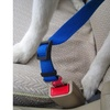 Pet Safety Car Seat Belt Leashes