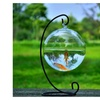 Hanging Glass Fish Tank Transparent Spherical  Fishbowl Vase