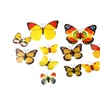 3D Wall Stickers Magnet Butterfly for Living Room Fridge Kitchen