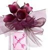 Vera Wang Lovestruck 1.7 OZ 50 ML Eau De Parfum For Women