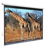 "Electric Remote Control Projection Screen 100"" 4:3"