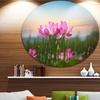 Blooming Lotus Flowers at Sunset' Floral Photo Circle Metal Wall Art