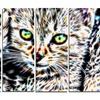 Cuddling Kittens - Metal Wall Art