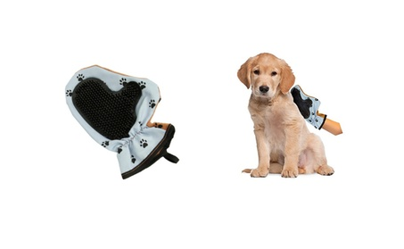 Durable Pet Grooming Glove For Your Dog Pleasant To The Touch Material 0b6ae934-6180-43b1-bd99-bafcf2cd288f