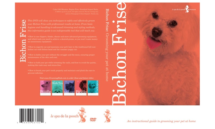How To Groom Bichon Frise Dog Grooming Video Groupon