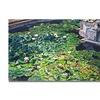 David Lloyd Glover Waterlillies Huntington Canvas Print