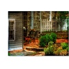Lois Bryan 'A Seat In the Shade' Canvas Art