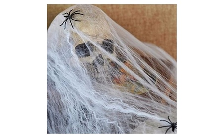 Halloween Spider Web With 2 Spiders Home Party Haunted House Decor e4195891-4d9a-489c-a59f-b6592652a9f1