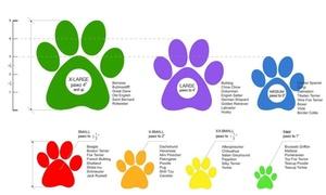 Dog Boots Disposable, Reusable, Waterproof Pawz