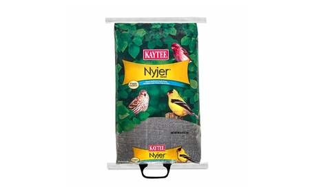 Kaytee Products 100033693 20 lbs. Nyjer & Thistle Seed (Goods For The Home Patio & Garden Bird Feeders & Food) photo