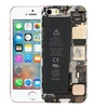 SE Case Cover For iPhone SE Creative Style Anti Fall Case