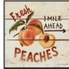 Fresh Peaches by David Carter Brown