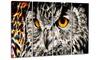 A Real Hoot Owl Metal Wall Art 48x28 4 Panels