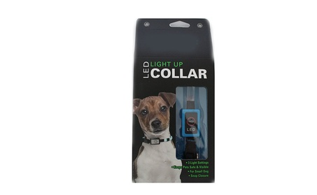 Portable for Traveling and Walking Dog LED Light Up Collar bd480a29-a380-40c0-9360-f1f58c26dd84