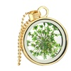 Round Glass Dried Flower Pattern Long Chain Necklace for Women