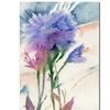 Sheila Golden Blue Carnation Canvas Print
