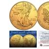 2018 1 oz American Silver Eagle Coin (BU) Genuine 24 Karat Gold Plated