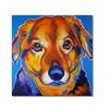 DawgArt 'Riley Square' Canvas Art