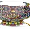 Funny Owl Animal Digital Art Metal Wall Art 28x12