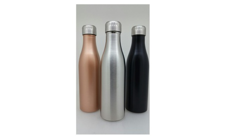 Set of 2 BPA Free Leak Proof 17 oz./500ml Dual Insulated Water Bottle 3e3b18a1-d196-4d79-b0f7-fed96afcc596