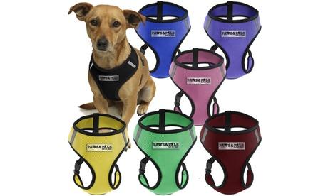 Soft Comfort Control Mesh Dog or Cat Pet Harness 42d4f966-0139-44cf-9ec7-7adae3eb03b6