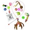 Cat Toy Bundle (15-Piece)
