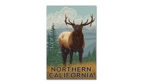 Lantern Press 'Elk' Canvas Art 9f44f75d-7371-4ef3-86df-bb096aa3e229