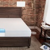 "BioPEDIC 10"" Smooth Top Memory Foam Mattress"