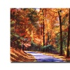 David Lloyd Glover Along the Winding Road Canvas Print