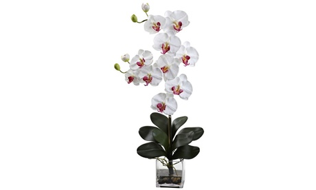 Nearly Natural Double Giant Phalaenopsis w/Vase White 6ad95975-51d8-4a28-90f7-aa4b43fade49