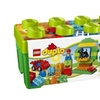 LEGO DUPLO All-In-One-Box-Of-Fun 10572 Creative Play