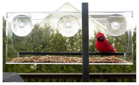 Evelots Window Bird Feeder With Drain Holes and 3 Suction Cups, Large 4ac30586-a6bd-47ff-83d5-0d155c757de1