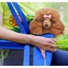 Dog Cat Pet Carrier Bag Travel Soft Comfort Portable Shoulder Small