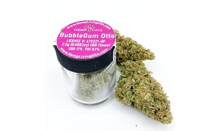 Hemp Living CBD Buds - Bubblegum Otto 17% CBD