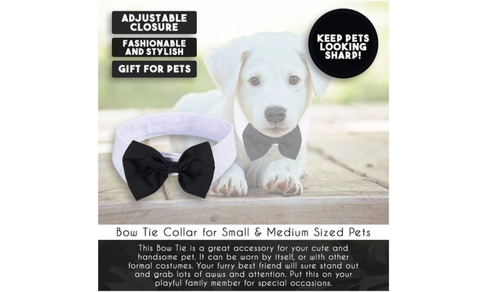 Juvale Dog Bow Tie Collar Formal Puppy and Kitten Tuxedo Costume Necktie for Small and Medium Sized Pet Black and White 15.35 Inches in Girth