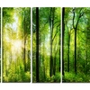 Forest with Rays of Sun Panorama - Landscape Metal Wall Art