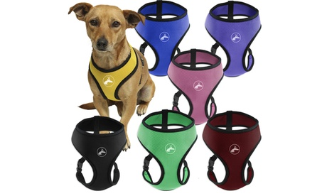 Soft Comfort Control Mesh Dog or Cat Pet Harness 42d4f966-0139-44cf-9ec7-7adae3eb03b6
