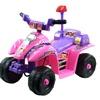 Princess 4 Wheel Mini ATV - Pink/Purple Ride on Toy Quad Battery Powered ATV Fou