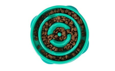 Outward Hound Slow Feed Interactive Dog Bowl (Color Random) f7da8ec3-eddb-4191-9dc1-fad52f8c101c