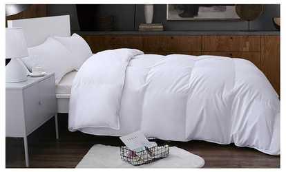 Image Placeholder Image For Palais European White Down Comforter