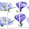 Hand-drawn Crocuses - Floral Art Painting Glossy Metal Wall Art