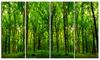 Green Forest Landscape Photo Metal Wall Art 48x28 4 Panels